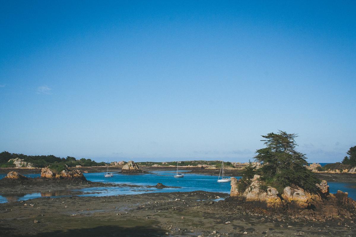 île-de-brehat-rocher-mer-arbre