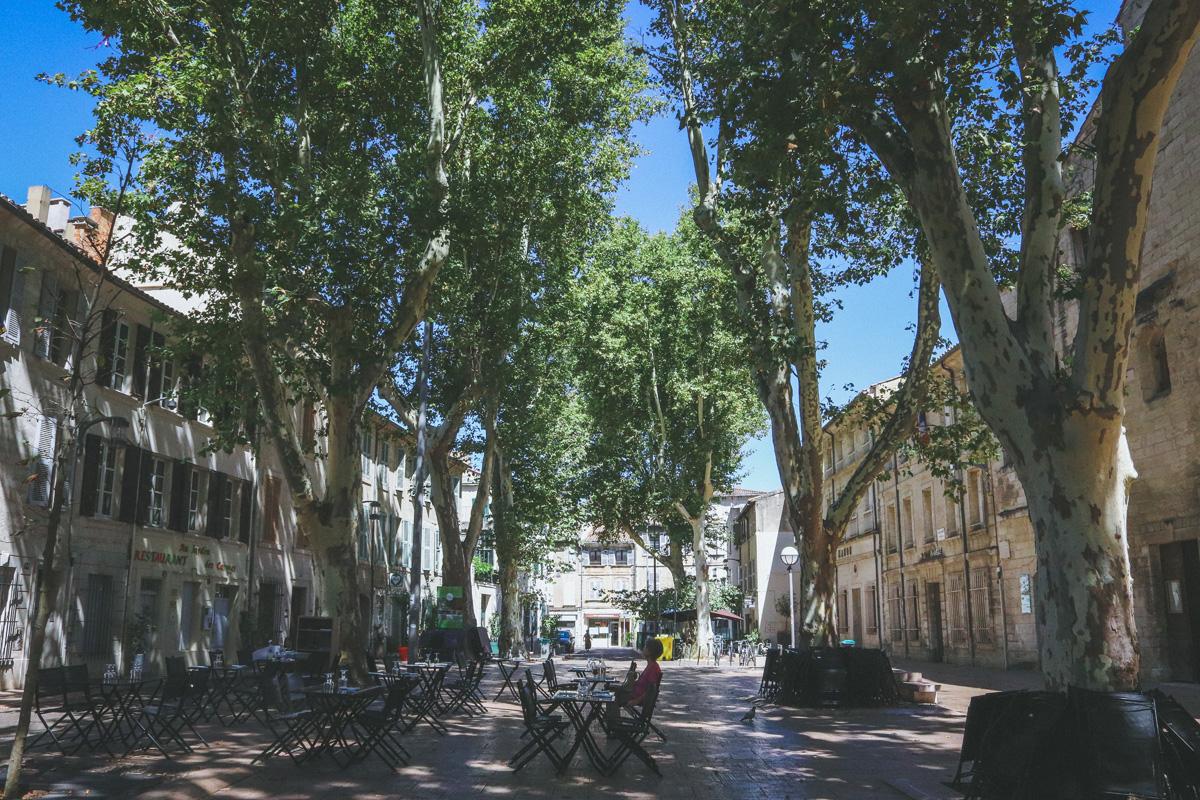 avignon-place-carmes