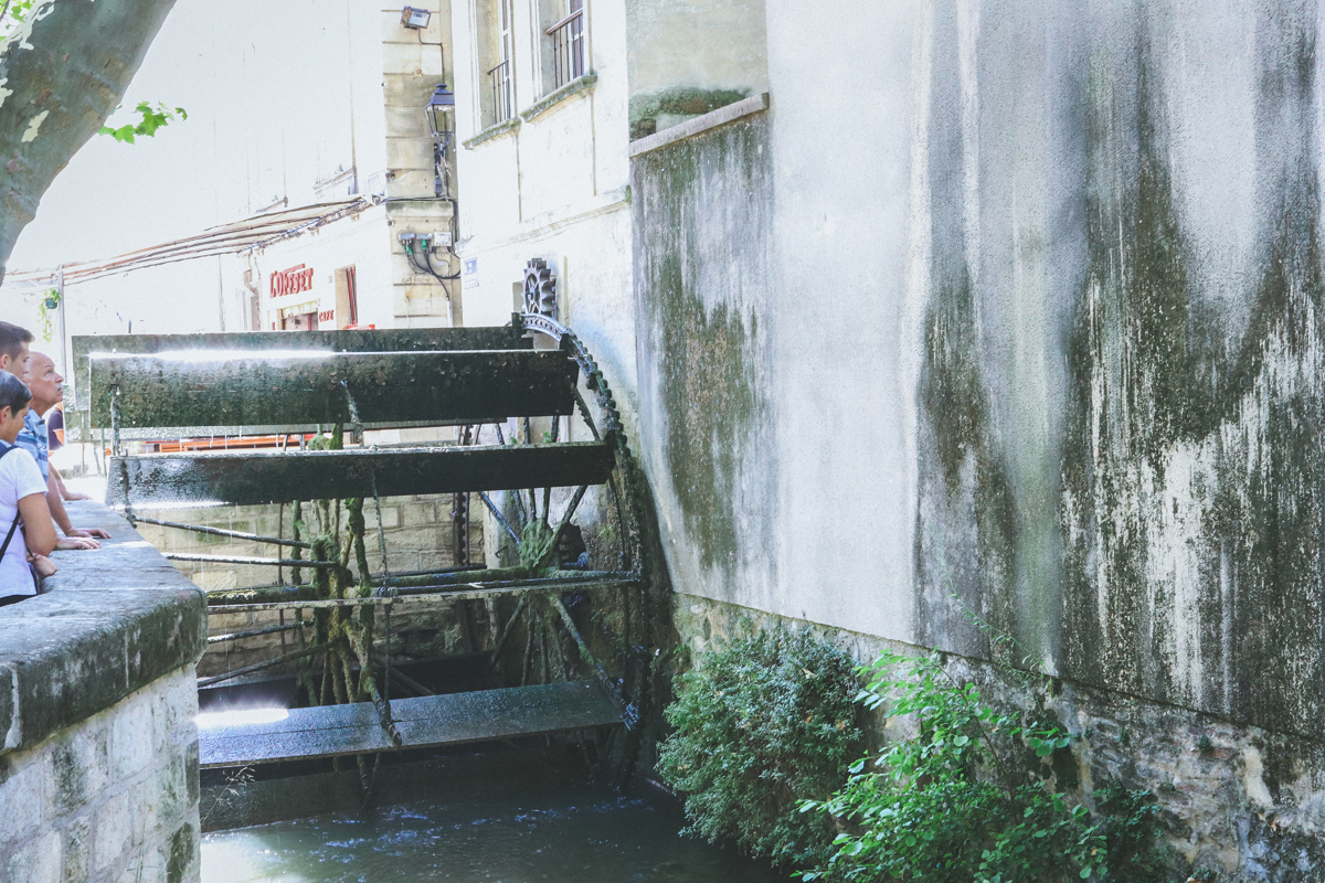 avignon-moulin
