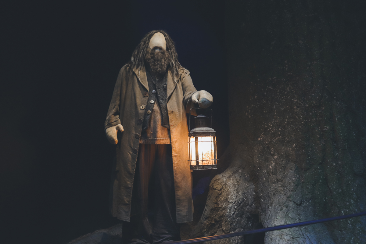 studio harry potter hagrid