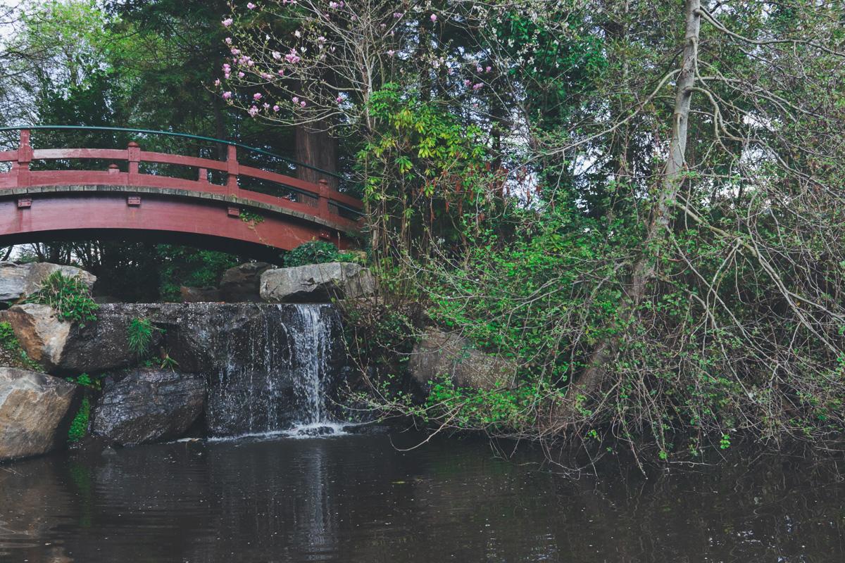 Ruban-Vert-pont-cascade-ile-versailles